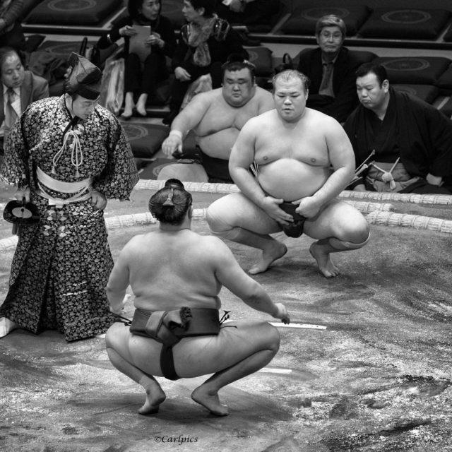 Sumo_02