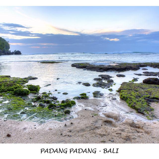 Landscape009